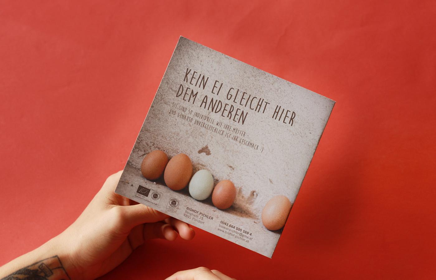 biohof-pichler-07-folder